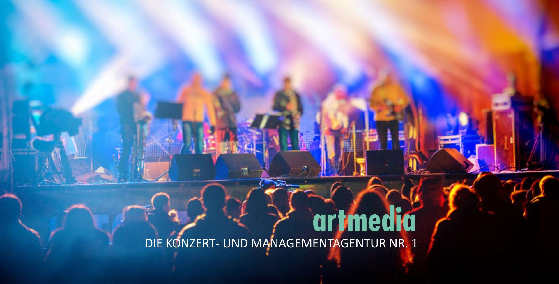 2017artmediaPageSlideshowLiveband5